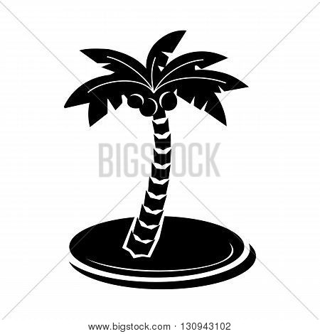 Palm tree with coconuts icon in simple style isolated on white background. Nature and flora  symbol