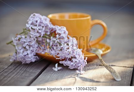 Orange cup with a spoon and an inflorescence of a lilac lilac on a wooden table.