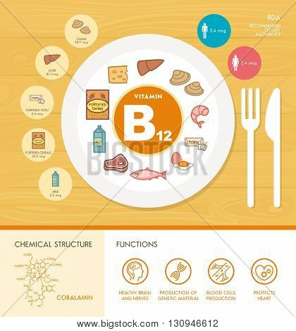 Vitamin B12 nutrition infographic with medical and food icons: diet healthy food and well being concept
