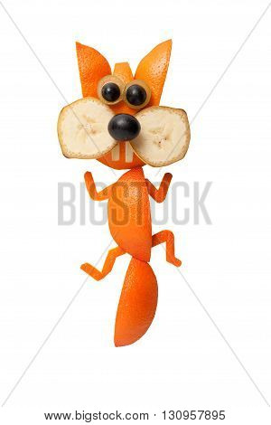 Funny squirrel made of orange on clear background