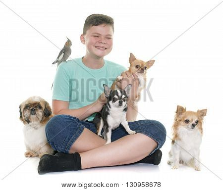 young boy and pet in front of white background