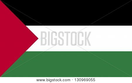 Palestine flag image for any design in simple style