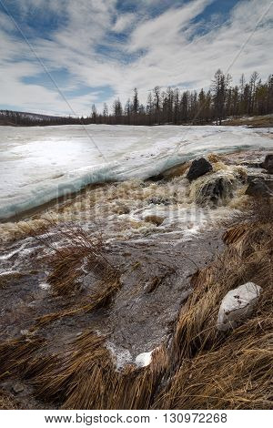 Rapid spring stream flows through the ice crust