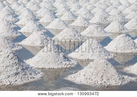 Collected of salt from sea water in salt farm Thailand.