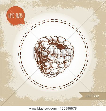 Hand drawn raspberry isolated on vintage background.Retro sketch style vector eco food illustration
