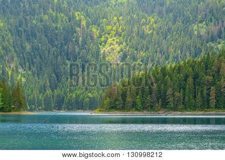 Beautiful Black Lake, Green Forest and Beautiful Mountains in the Morning Fog. National Park Durmitor, Montenegro