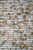 Old British Weathered Gray Roof Slates Background, poster