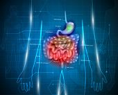 Постер, плакат: Gastrointestinal Tract Abstract Background