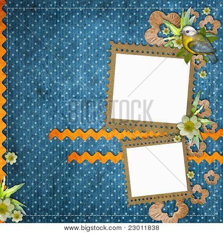Hermoso diseño con marcos de fotos, pájaro