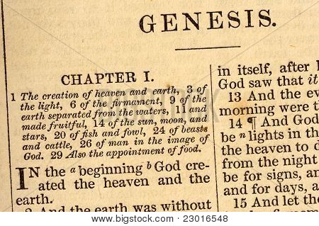 The First Words Of Genesis