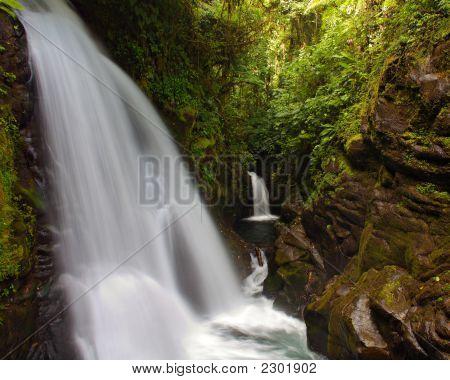 Lapaz Waterfall Gardens - Landscape