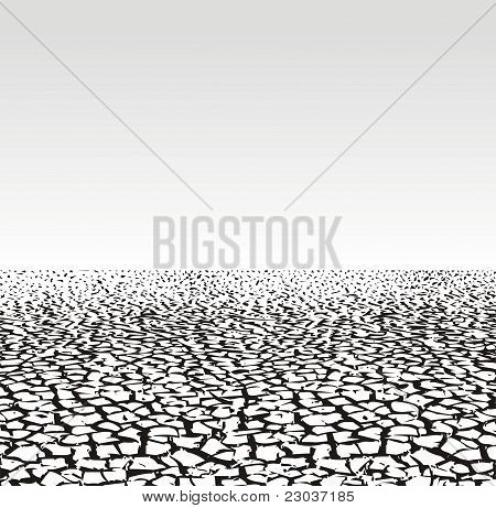 Cracked Ground - Dry Season