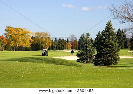 Carrinho de golfe no Fairway