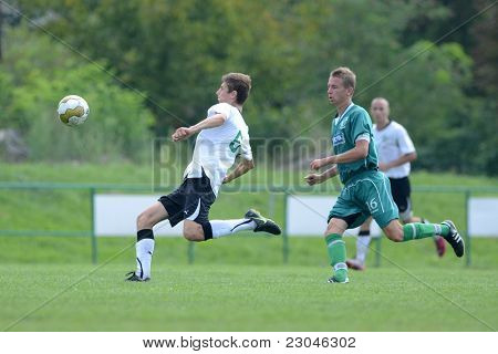 KAPOSVAR, HUNGARY - AUGUST 27: Roland Pallosi (in green) in action at the Hungarian National Championship under 18 game between Kaposvar (green) and Gyor (white) August 27, 2011 in Kaposvar, Hungary.