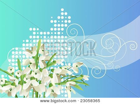 Vector spring snowdrops background  with free space for your text