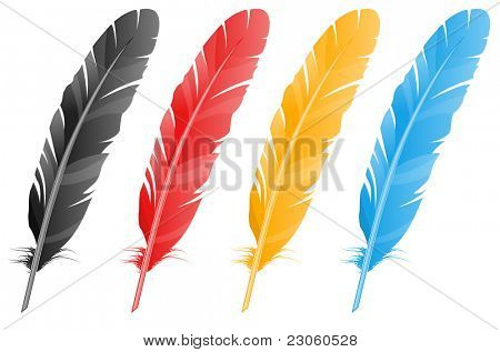 Vector feather. Four variants of color.