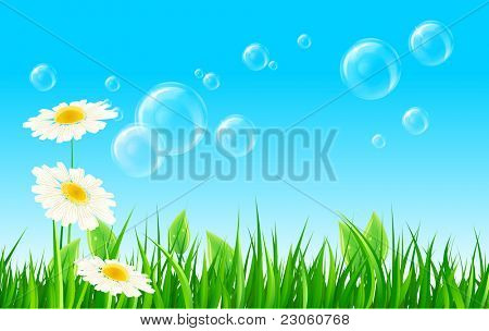 Green grass with soap bubbles