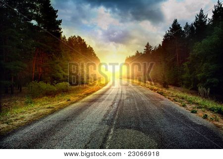 road in the Russian forest