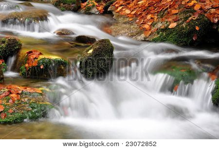 autumn creek in bohemia
