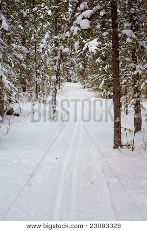 Cross-country ski track