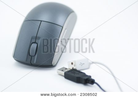 Usb Plugs And Mouse
