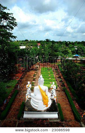 Behind the Buddha