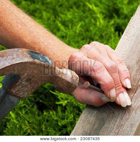 Female Hand, Hammer, Nail, Board