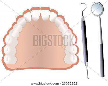 Teeth and dental tools vector
