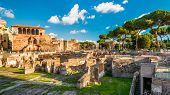 Panoramic View Of Trajans Forum In Summer, Rome, Italy poster