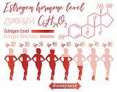 Estrogen Hormone Level Infographic. Beautiful Medical Vector Illustration With Oestrogen Molecular F poster
