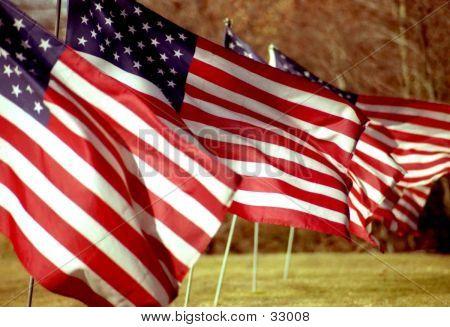 Amerian Flags