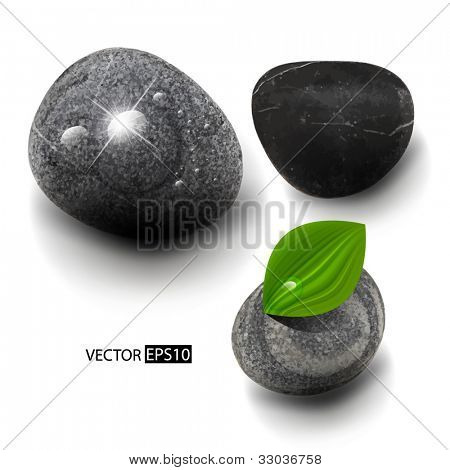 Vector stones isolated on white.