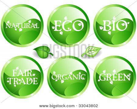 Green Web Glossy Buttons