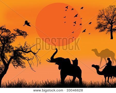 African Safari Theme Vector Illustration With Camels And Elephant On Sunet
