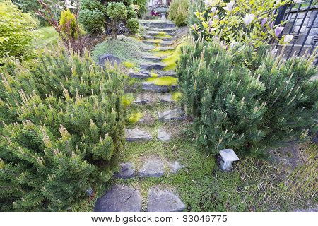 Garden Natural Granite Stone Steps