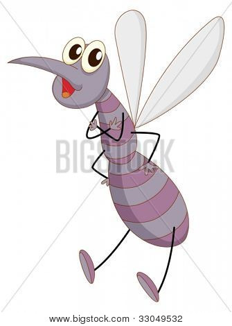 Illustration of a comical mosquito