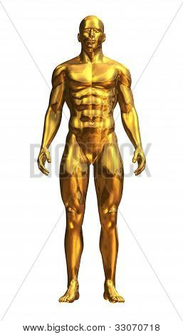 Gold Man Standing Front