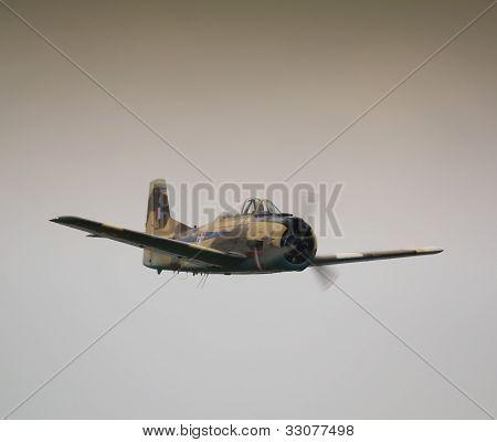 Fennec voando