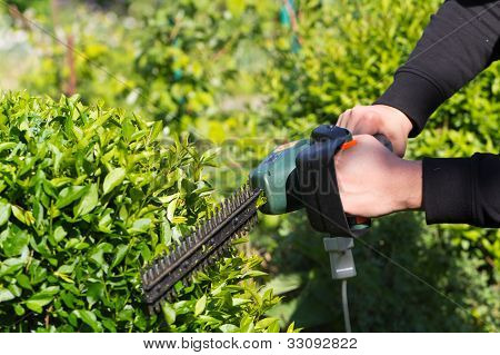 Young man mowing the grass , close up shot