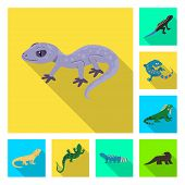 Vector Design Of Tail And Fauna Icon. Set Of Tail And Environment Vector Icon For Stock. poster