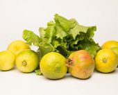 Vegetable Products, Full Of Vitamins, Healthy, Autumn Products, Green Lettuce, Yellow Lemons And Ros poster