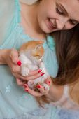 Close Up Of Cute Kitty In Womans Hands. poster