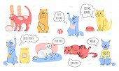 Doodle Set Of Cute Cats Who Ask To Play, Ask For Food And Affection. Kitten Meowing. Vector Illustra poster