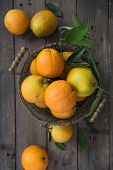 Oranges In Bowl. Lots Of Fresh Oranges Fruits Plucked From Branch Of Orange Tree. Top View Oranges poster