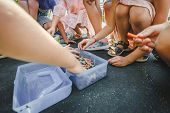 Children Art Drawing Together. Children Choose Chalk For Drawing In A Box. Close Up Wide Angle Photo poster