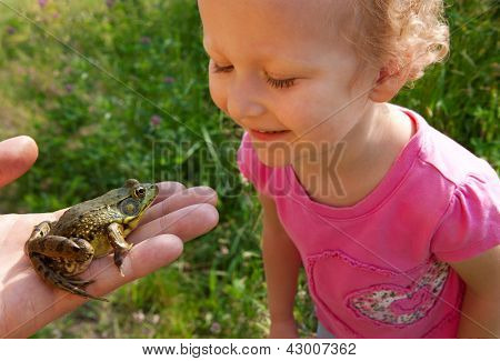 Girl is inspecting a frog