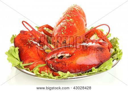 Red lobster on platter with vegetables isolated on white