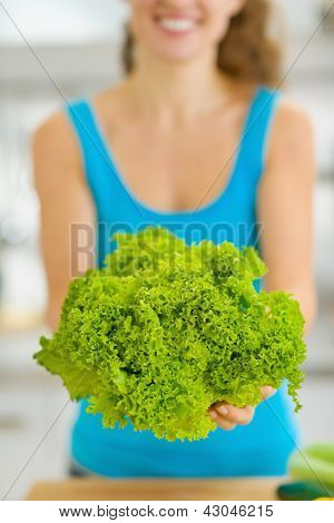Closeup On Green Salad In Hand Of Young Woman