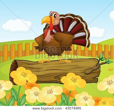 Illustration of a turkey above a trunk inside the fence