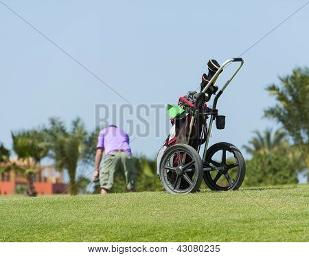 Caddy On A Golf Course With Golfer